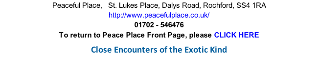 Peaceful Place,   St. Lukes Place, Dalys Road, Rochford, SS4 1RA http://www.peacefulplace.co.uk/ 01702 - 546476 To return to Peace Place Front Page, please CLICK HERE  Close Encounters of the Exotic Kind